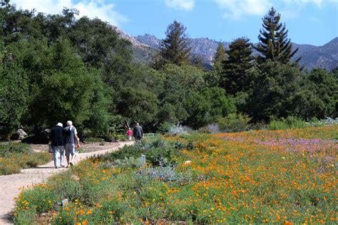 santa barbara botanic garden visit santa barbara