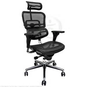 Ideas Chair With Headrest Cozy Ergohuman Office Chairs Images Decors Dievoon