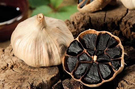 Herbal Black Garlic Bawang Hitam Original Supplier Herbal Indonesia harga dan khasiat walatra black garlic free ongkir