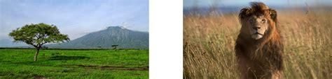 ekosistem darat hutan tropis hutan musim sabana stepa