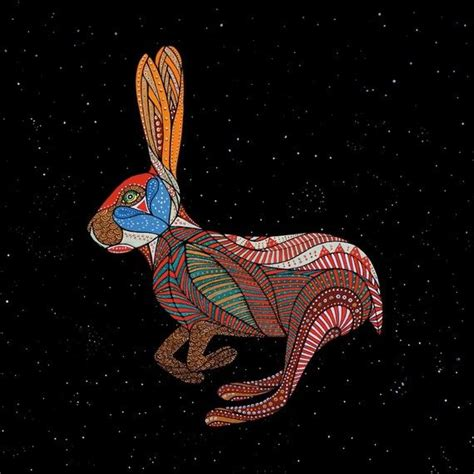new year rabbit personality 35 best zodiac rabbit images on
