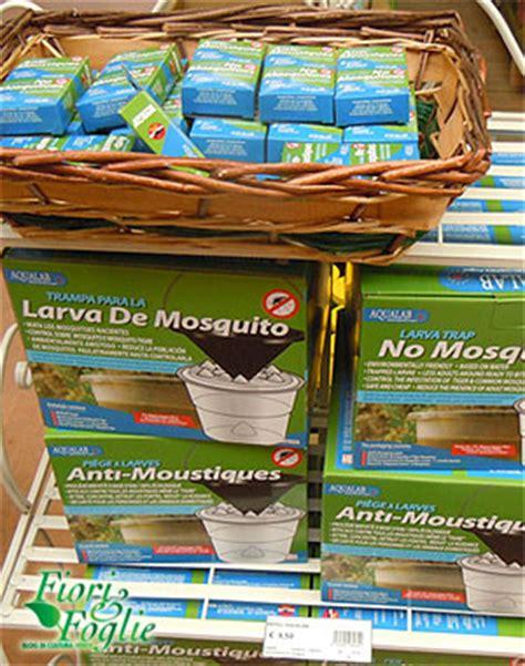 eliminare zanzare dal giardino casa moderna roma italy combattere zanzare in giardino