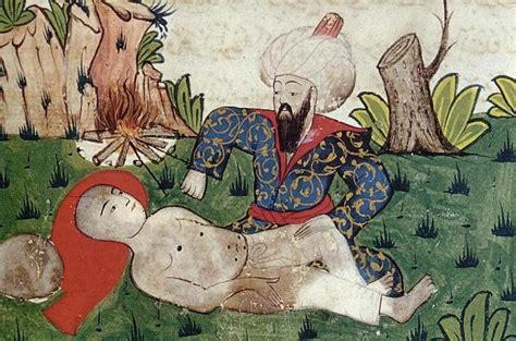 Health In The Ottoman Empire A Collective Achievement In Culture Of The Ottoman Empire