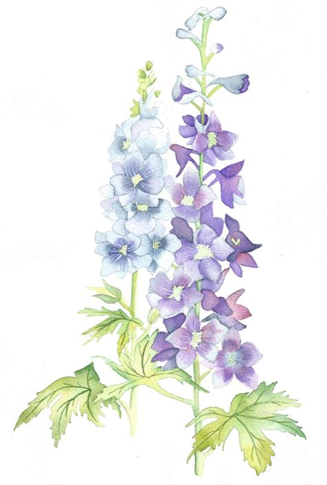 delphiniums afternoon artist