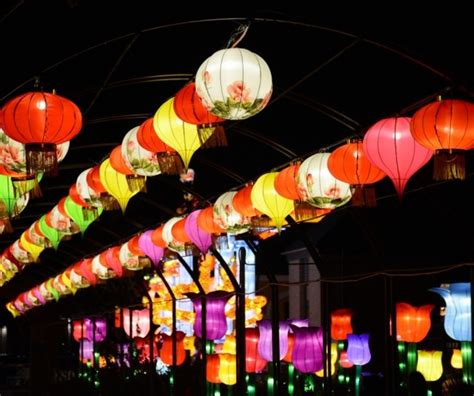 city park dazzles with china lights neworleans me