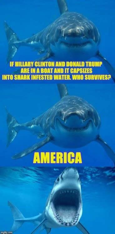shark meme shark meme on