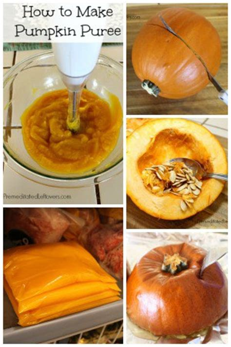 how to cook your fresh pumpkin and more new life