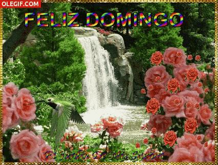 imagenes hd feliz domingo domingo sunday gif domingo sunday happysunday discover