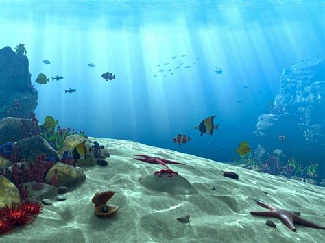 free wallpaper underwater scene underwater scene by akchilug on deviantart