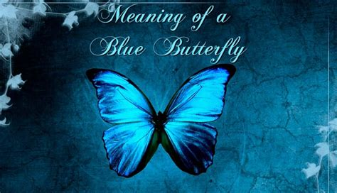 The Meaning Of A Blue Butterfly Spotting A Butterfly Butterfly Meanings