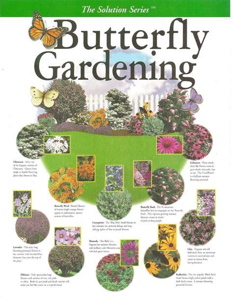 Butterfly Garden Layout Create Your Own Butterfly Garden Pinlavie
