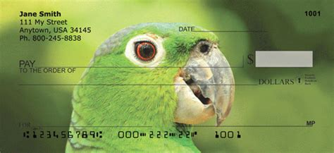 Nucover Tropical Flamingo parrot personal checks parrot check designs