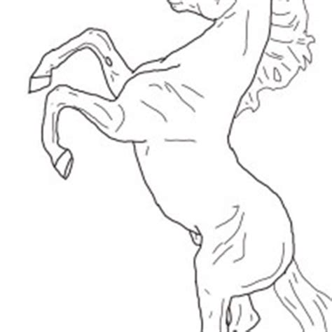 coloring pages of horses rearing animals netart part 12