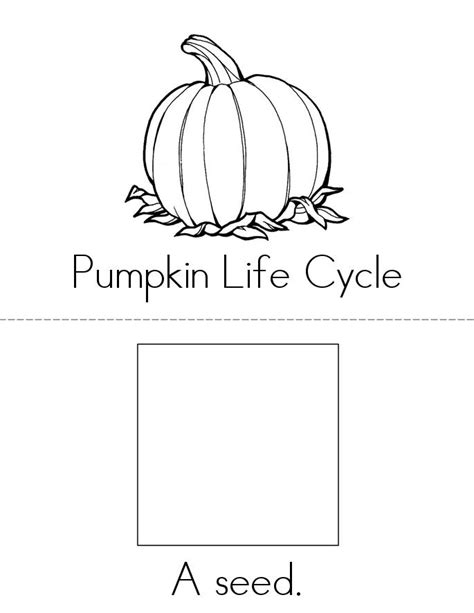 coloring pages of life cycle of pumpkin pumpkin life cycle book twisty noodle