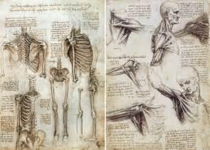 Anatomy of human body da vinci jpg