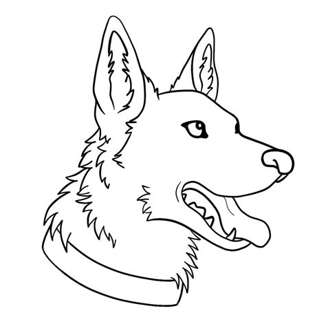 australian shepherd coloring sheet coloring pages