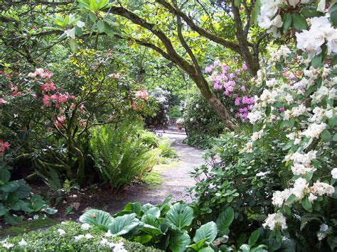 Lakewold Gardens by Lakewold Gardens