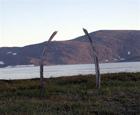 File Domino Whale Bone Hg Jpg Wikimedia Commons - file whale ribs yttygran island jpg wikimedia commons
