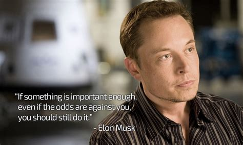 elon musk hd wallpaper elon musk wallpapers i made for myself to remember his