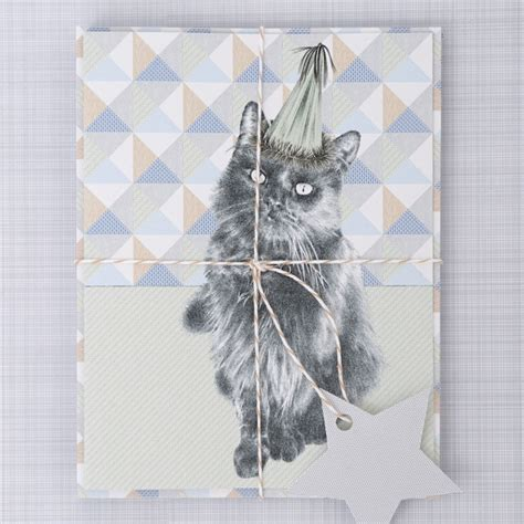 Handmade Cat Cards - shop handmade cat greetings cards by wight