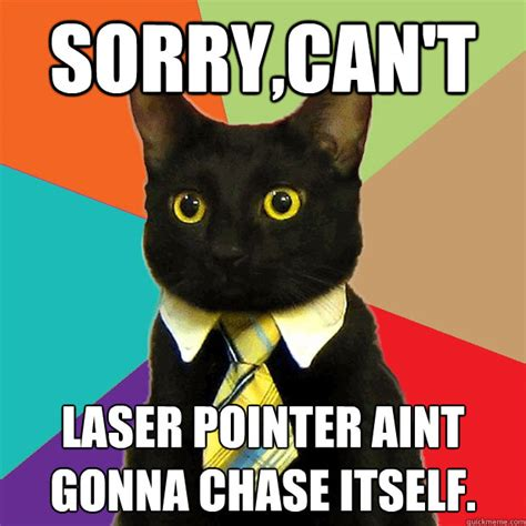 Laser Cat Meme - sorry can t laser pointer cat meme cat planet cat planet
