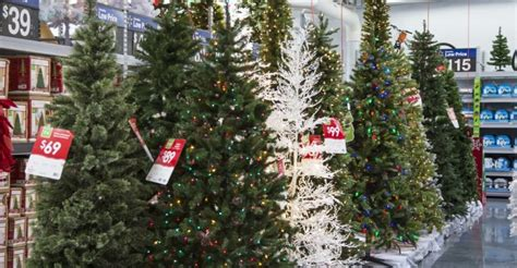 christmas trees prices on the rise and it is ridiculous
