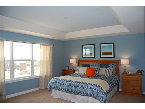 Bedroom Paint Ideas With Tray Ceiling Tray Ceiling Great Home Design References H U C A Home