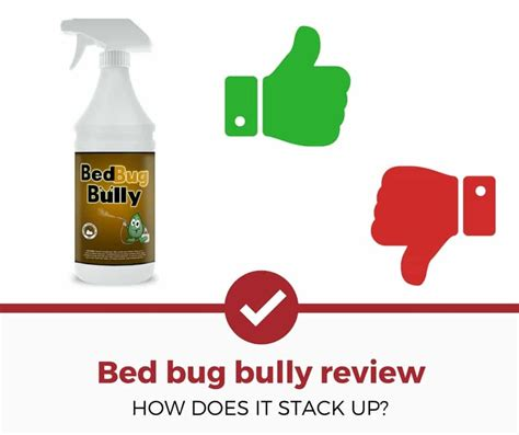 does bed bug bully work does bed bug bully work does bed bug bully work bed bug