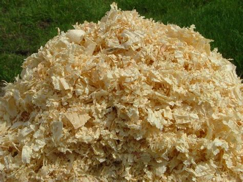 pine bedding horse stall bedding a new bale of wood shavings in horse stall for bedding stock