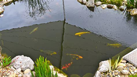 Klares Wasser Im Teich 1420 by Sonnensegel Teich Koiteich Beispiele F 252 R Den Einsatz