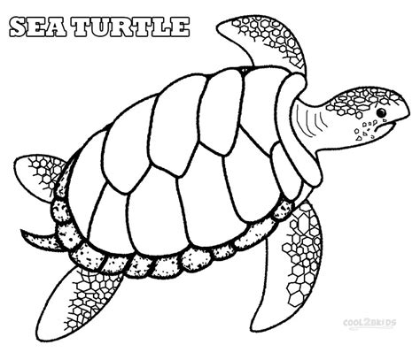 coloring page turtles printable printable sea turtle coloring pages for cool2bkids