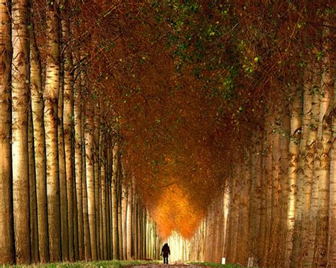 imagenes espectaculares reflexivas fotos de paisajes espectaculares