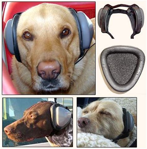 ear plugs for dogs mutt muffs hearing protection for dogs gifts for the pet lover pi
