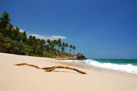 sri lanka best beaches best beaches in sri lanka travel sri lanka