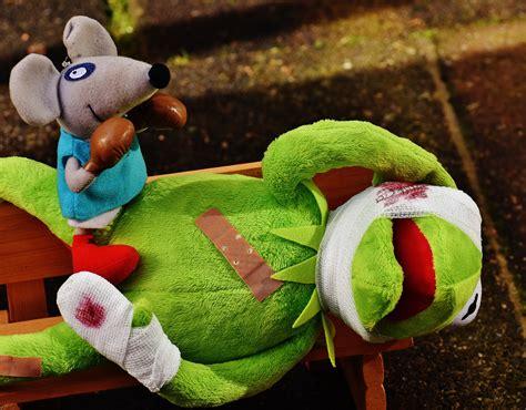 Kotak Tempat Makan Anak Warna Hijau gambar mouse hewan imut hijau warna kotak katak duduk beruang teddy tambalan tekstil