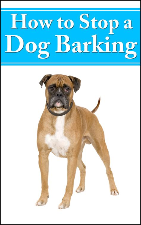 how to stop dog barking when left alone how to stop a dog barking plr download ebooks