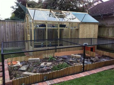 Outdoor Heat Ls For Tortoise by Outdoor Tortoise Enclosure Diesel S Bullfinch And
