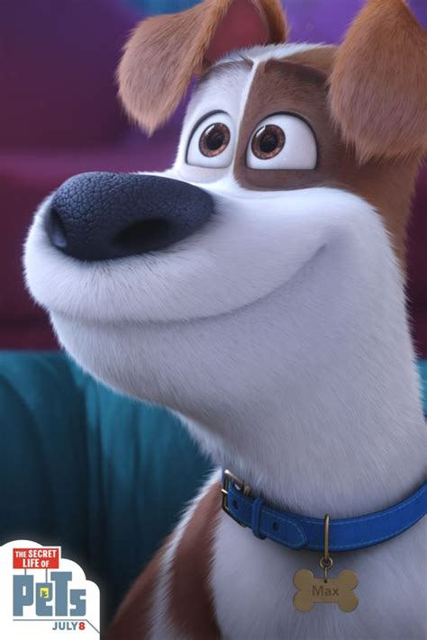 deny maxs adorable puppy eyes  secret