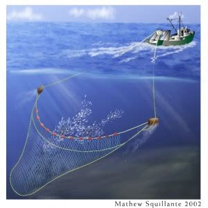 commercial fishing boat definition real good fish