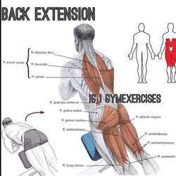 what does benching work out gym exercises one of my favs execution stand on a back