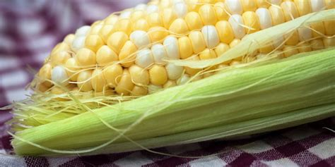 How to make corn on the cob in the microwave insider