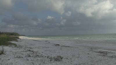 private boat rentals naples fl kbe keewaydin beach excursion coming soon naples bay