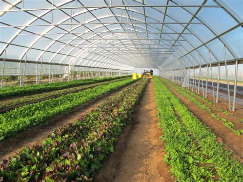top 10 reasons you should own a high tunnel farmtek blog