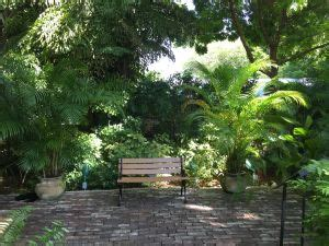 Hemingway Garden Of by Master Gardeners Of Greater New Orleans