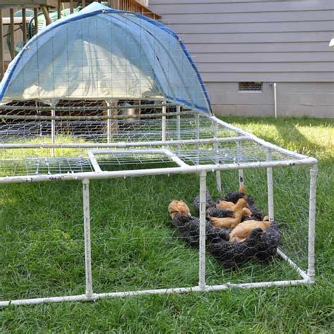 serre weight build a pvc chicken tractor