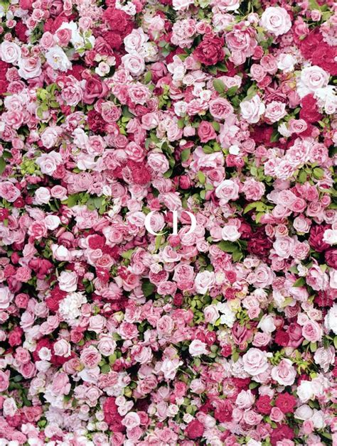 flower wall wedding cost miss fragrance roses miss miss fleur et
