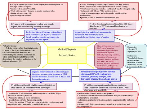 nursing concept map nursing care plans on care plans nursing process and nursing