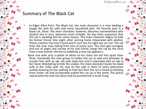edgar allan poe biography synopsis a psychoanlysis the black cat
