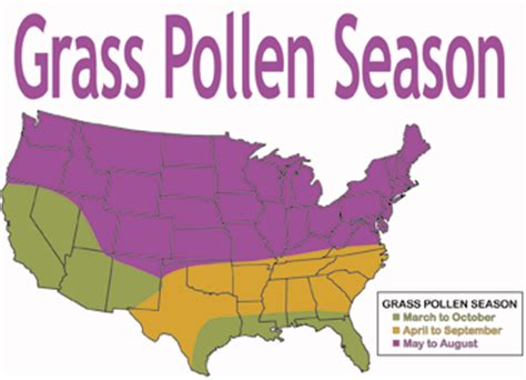 allergy map allergy map usa my
