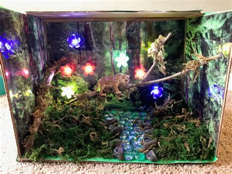 aquarium habitat design project easy animal habitat project for kids with step by step